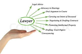 Law Essay Sample: Intellectual Property Rights